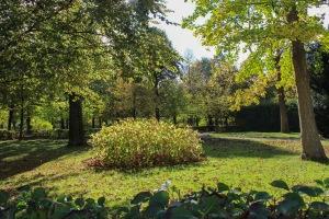 vienna palace gardens