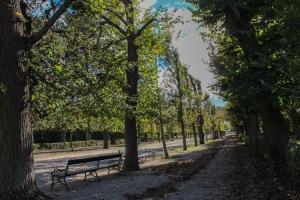 vienna sidewalks